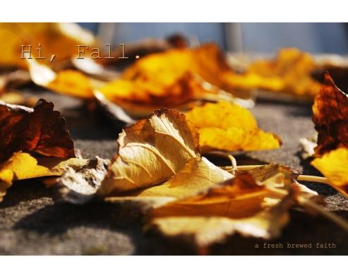 Hi, Fall