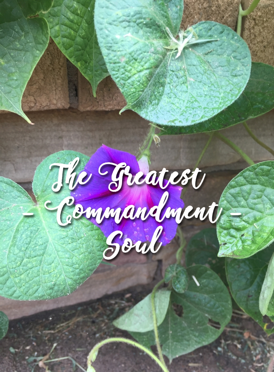 The Greatest Commandment: Soul