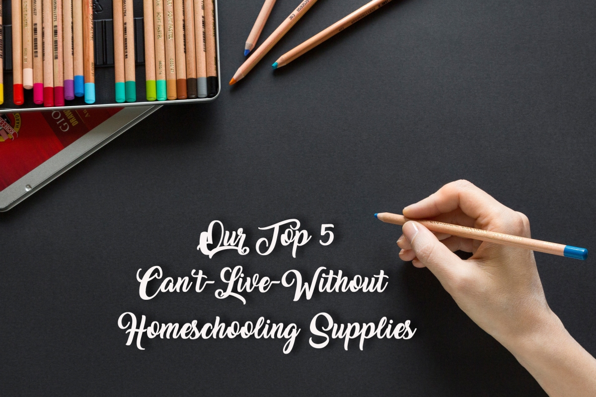 Our Top 5 Can't-Live-Without Homeschooling Supplies