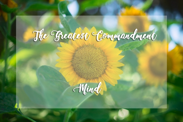 The Greatest Commandment – Mind